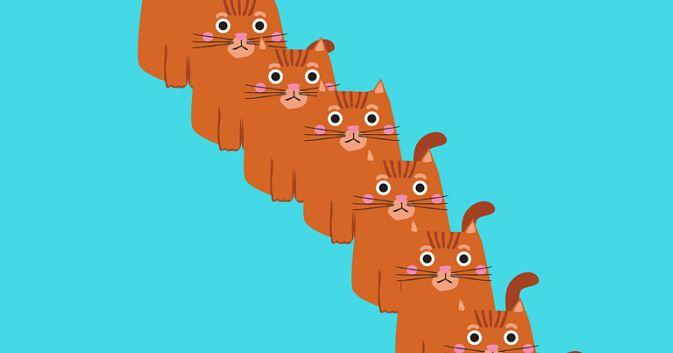 É claro que você já ouviu a história de que gatos têm sete vidas. Mas sabia que em outros países (os de língua inglesa), este número ...