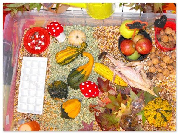 L'automne profile le petit bout de son nez,alors notre boite sensorielle prend aussi les couleurs de saison! Nous allons donc de nouveau apprendre de nos mains,en manipulant les objets de la boite, en découvrant textures et matières nouvelles , en comparant...