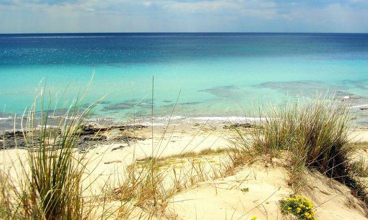Il mare di Taranto è noto per le sue acque cristalline, le scogliere e le spiagge dorate che si estendono da Castellaneta Marina fino a Torre Colimena Scopri di più: http://www.madeintaranto.org/vacanze-al-mare-taranto-le-spiagge-top/  #Mediterraneotour #Mediterraneo #Taranto #Puglia #Weareinpuglia #turismo #cittàdavivere #citywiew #Italy #Madeinitaly #Visitpuglia #Mediterranean #turismoaccessibile #innovazionedigitale #smartcities…