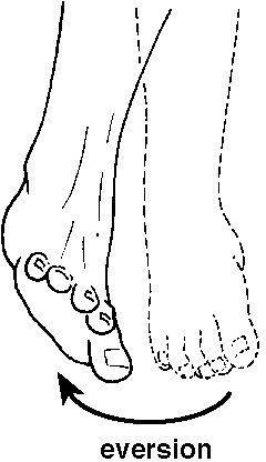 EVERSIÓN. Alejamiento de la planta del pie de la linea media.