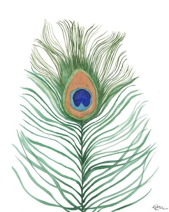 Peacock Feather watercolor painting art print home decor