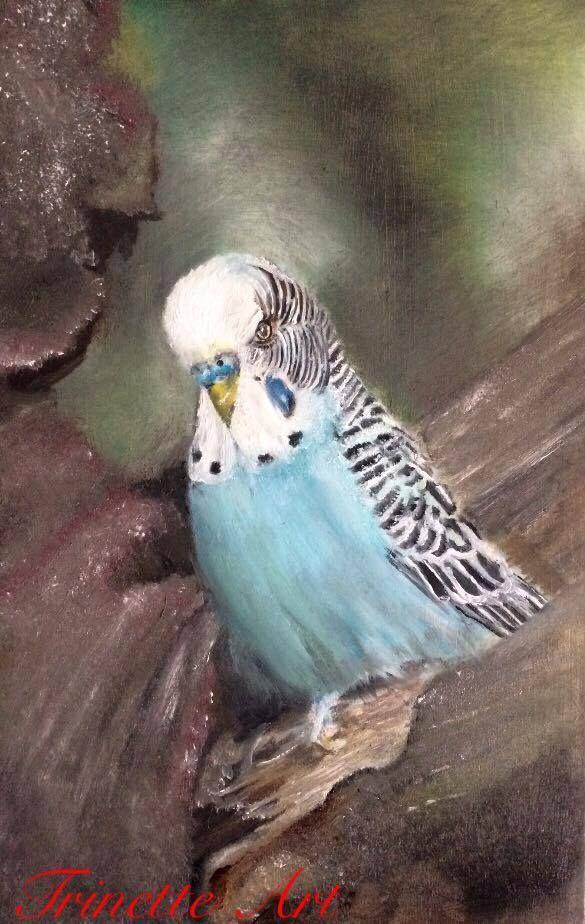 Parakeet oilpainting on wood