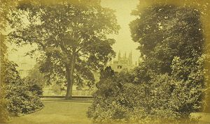 Merton College from the Gardens by George P. Day