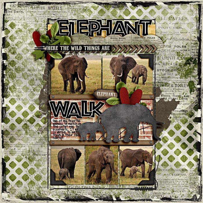 17 Best Ideas About Elephant Outline On Pinterest