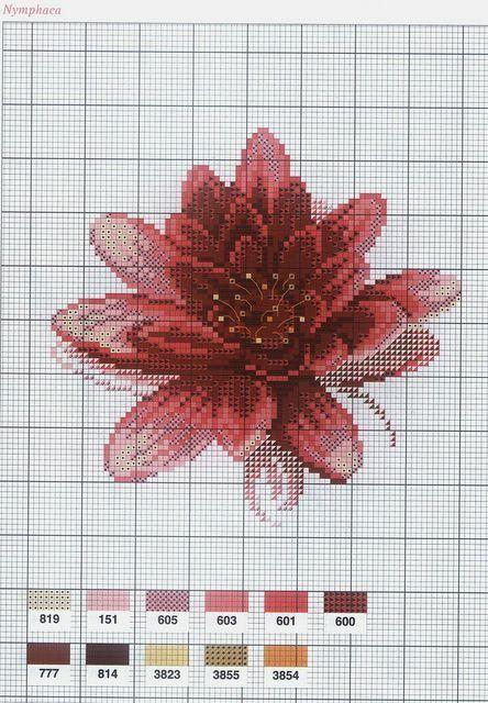 [flor-ponto-cruz-grafico-36%255B2%255D.jpg]