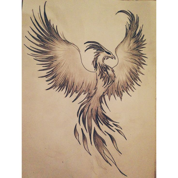 34 best tattoos images on pinterest phoenix tattoo design tattoo designs and tattoo ideas. Black Bedroom Furniture Sets. Home Design Ideas