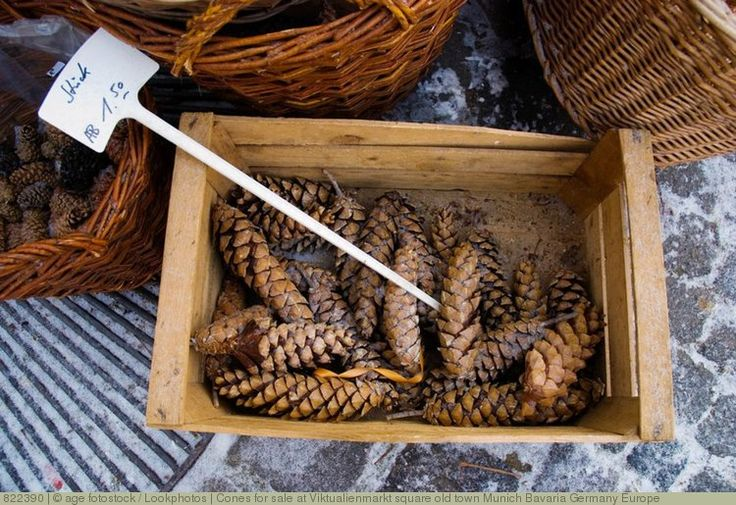 Cones for sale at Viktualienmarkt square old town Munich Bavaria Germany Europe