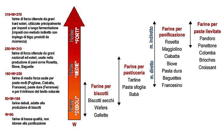 La forza della farina - Scienza in cucina - Blog - Le Scienze