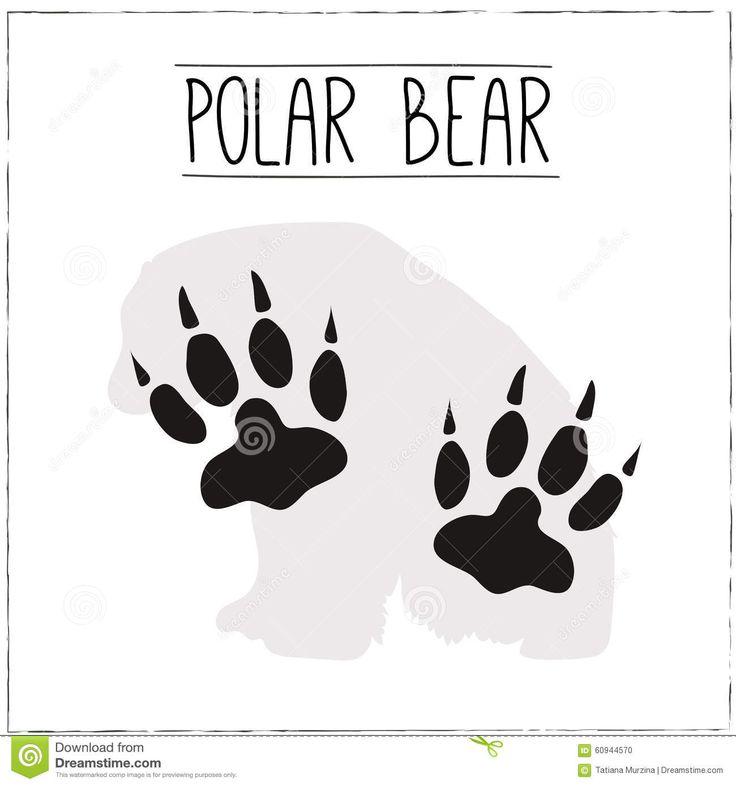 huella oso polar - Buscar con Google