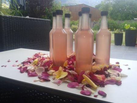 Vielen Dank an Sandra Hauser für das leckere Rezept! Zutaten: 3 Gramm Ungespritzte Duftrosen 30 Holunderblüten 3 Biozitronen in Scheiben geschnitten Saft von 3 Zitronen 4 Liter Wasser 3 KG Zucker Z...