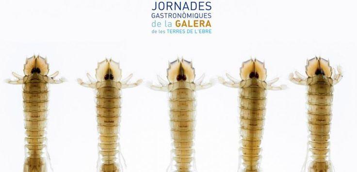 Jornades Gastronòmiques de la #Galera a #Alcanar, del 13 de febrer al 8 de març. #gastronomia