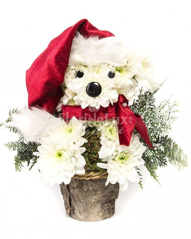 catelus de flori, iarna, cadouri de craciun https://www.floridelux.ro/catelusul-de-flori-al-mosului.html