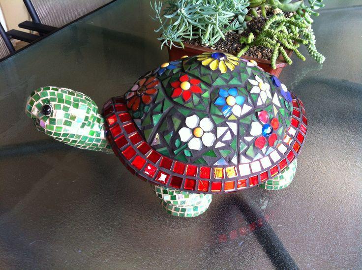 Love my tortoise