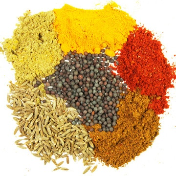 spices...flavors of Indian cuisine
