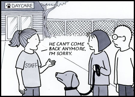 From the web comic strip Dog In Charge