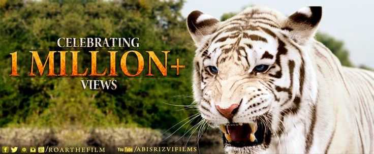 Roar - Tigers Of The Sunderbans Mp4 Movie Free Download