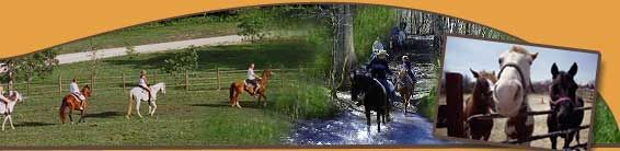 this one....Come Ride Our Horses at Smoky Mountain Riding Stables in Gatlinburg, Tennessee