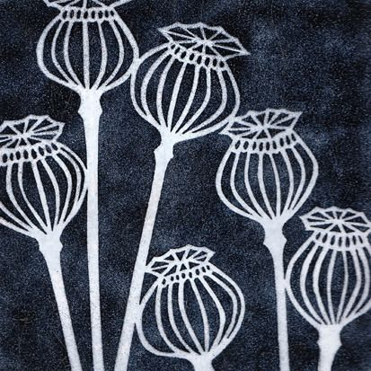 Janine Partington - black poppy seedheads