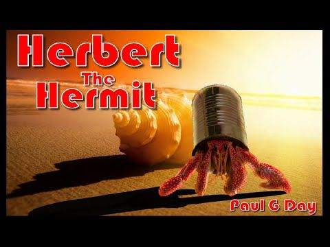 Herbert the Hermit Crab