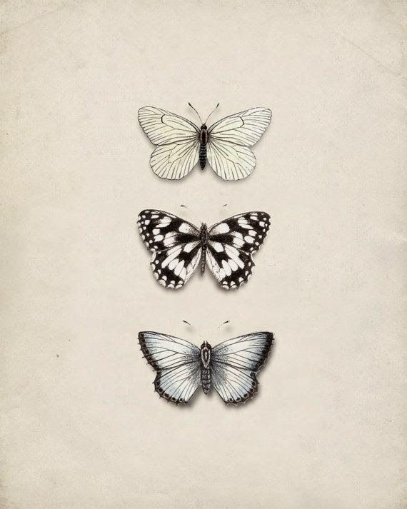 I really love this nature inspired ink print of three butterflies, would be perfect for the living room and home