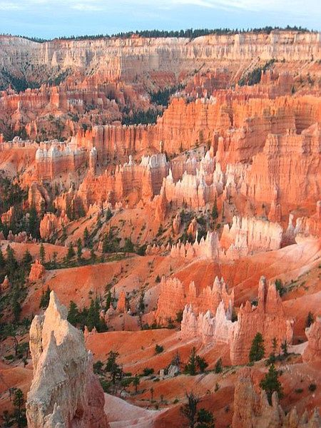 Bryce Canyon National Park, Utah - One of this weeks top 5 on Pinterest. Click the photo to see the other 4.