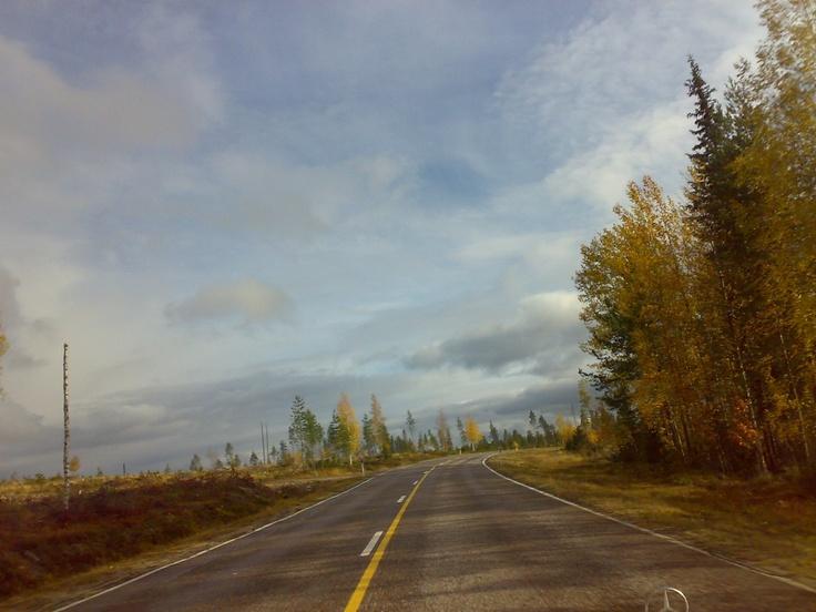 Autumn in Rovaniemi.