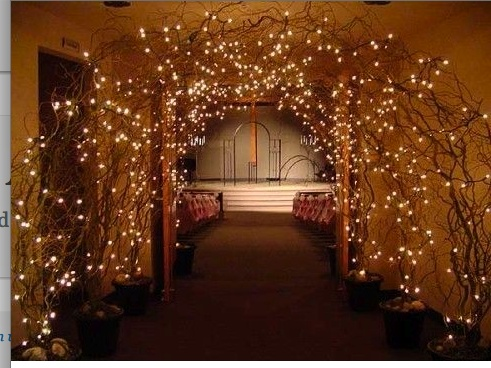 Grand Twig Entrance With Fairy Lights Hanging Foliage To
