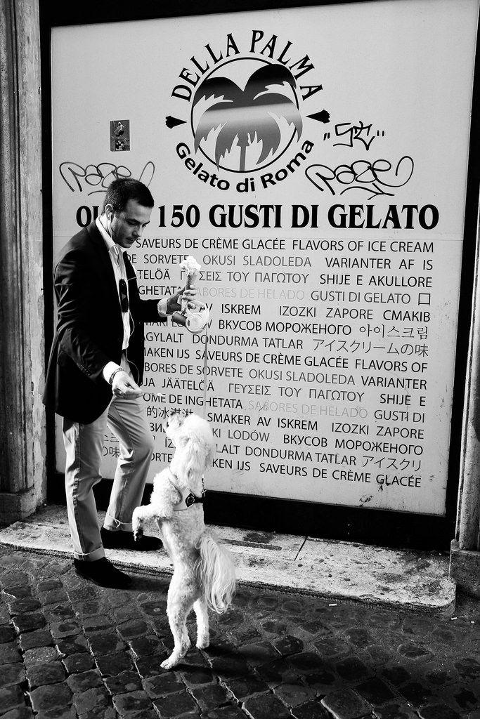 Gusti di Gelato (Tobias Leeger) Tags: street italien blackandwhite bw italy dog man rome roma monochrome digital italia fuji streetphotography style suit icecream gelato fujifilm eis rom streetstyle dellapalma gelatodiroma x100t