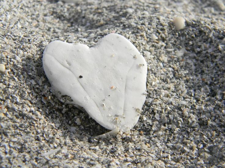 a heart as fragile as my own - photo credit: adrien myles