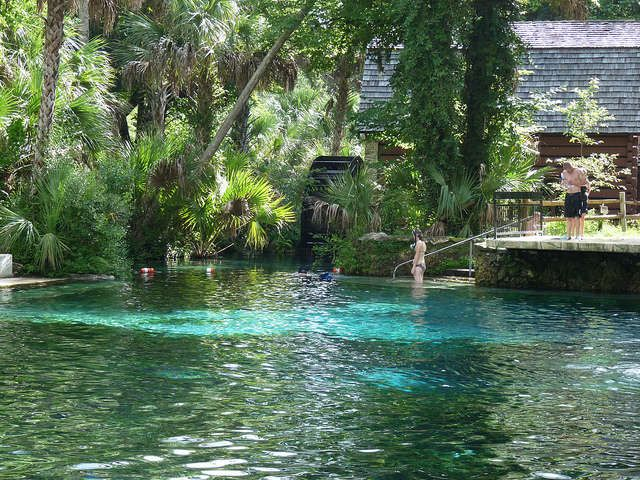 27 Best Images About S O S Savingoursprings On
