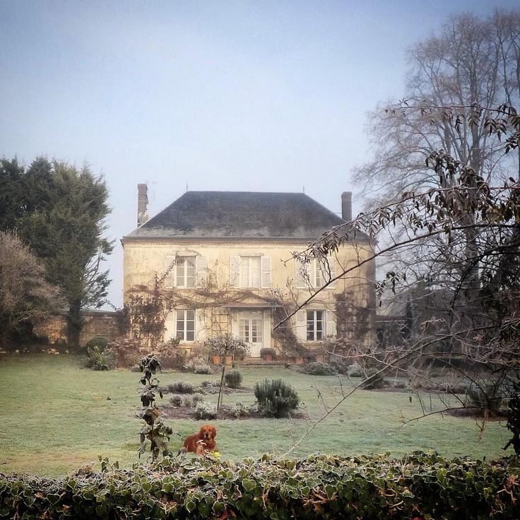 Bright blue sky, frozen ground and morning calm #winter #normandy #mygarden #myfrenchcountryhome