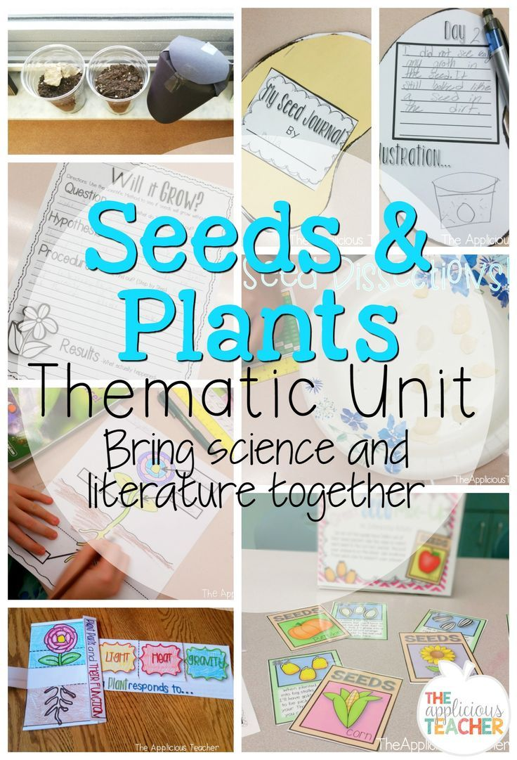 Seeds and plants thematic unit. I love how this teacher effortless blends science with literature to create an engaging unit that not only builds vocabulary, but content specific knowledge too. Science experiments, diagrams, foldables, centers, and activities!