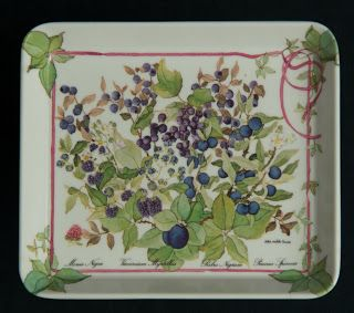 Melamine Snack Tray -- Summer Fruit, by Design Imports Ltd. of Providence , R. I., small size, made in Italy.