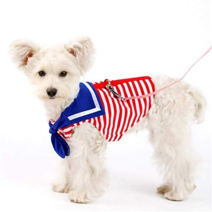 A handsome Sailor Dog Shirt that is also a harness! Featuring bright red stripes with complimenting blue neckerchief and trim. For small dogs.