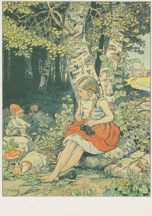 Ansicht en Postkaarten Verzameling. Met o.a. tekeningen van Cornelis Jetses. Aap Noot Mies en Ot en Sien