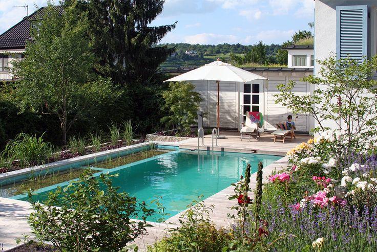 Projekt 4, Naturpool, Schwimmteich, Garten – Lauterwasser Gartenbau, Landschaftsbau, Benningen, Ludwigsburg
