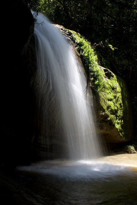 Buderim Falls, Sunshine Coast, Australia - photo by Belinda Cobby