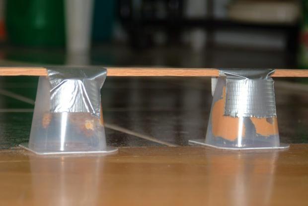 L'utilisation d'appâts pour fourmis à base d'acide borique | Espace pour la vie
