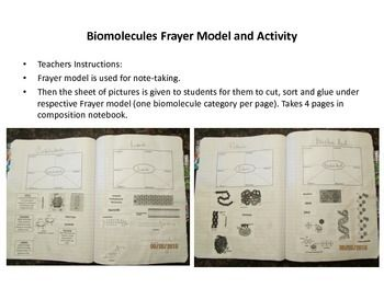 Use with organic molecules, biomolecules, macromolecules, etc. Take your style of notes for filling in Frayer model, followed with a cut-sort-glue activity.