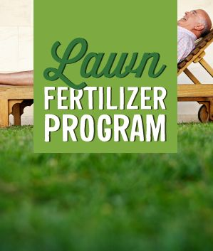 We have developed an effective 4 step annual feeding program using our Schultz Lawn Fertilizer with controlled-release nitrogen that feeds for 4 months. This program will give you one of the best-looking lawns on your block, but won't dig deep into your pocket.