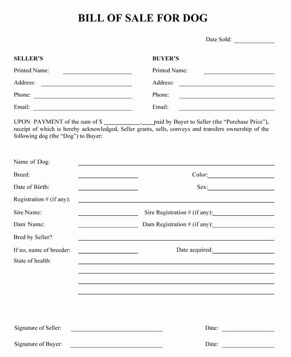 Puppy Sale Contract Template In 2020 Sample Resume Bill Of Sale