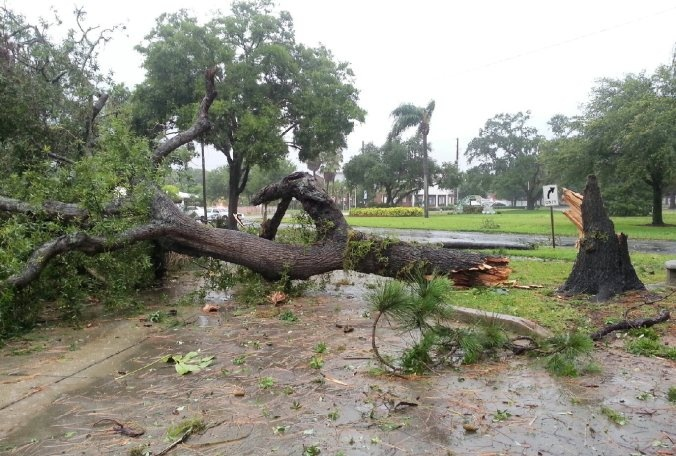 Tropical Storm Andrea brings rain, tornadoes, gusty wind to Bay area | Bay News 9