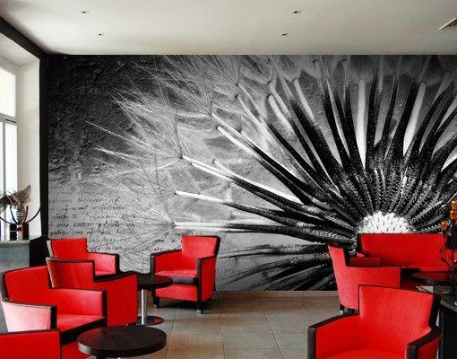 Die besten 25+ Fototapete pusteblume Ideen auf Pinterest Bild - fototapete wohnzimmer schwarz weiss