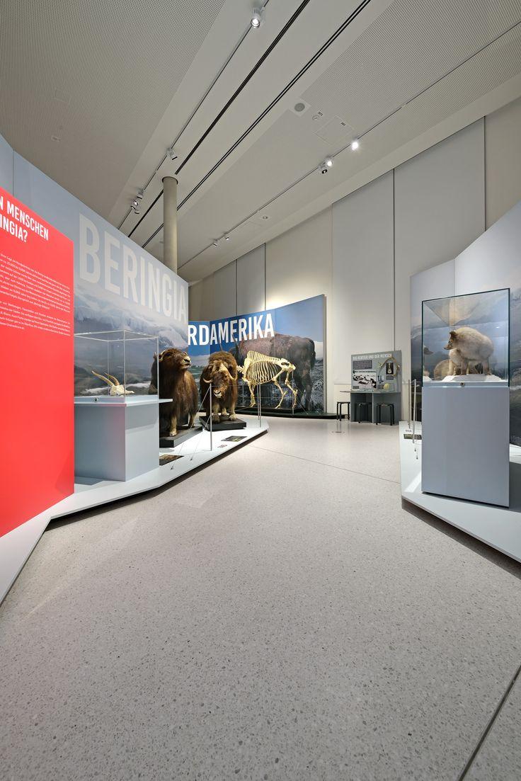 Pavinodis® origo Terrazzo im Museum für Naturkunde, Karlsruhe #terrazzo #terrazzodesign #flooring #terrazzoflooring