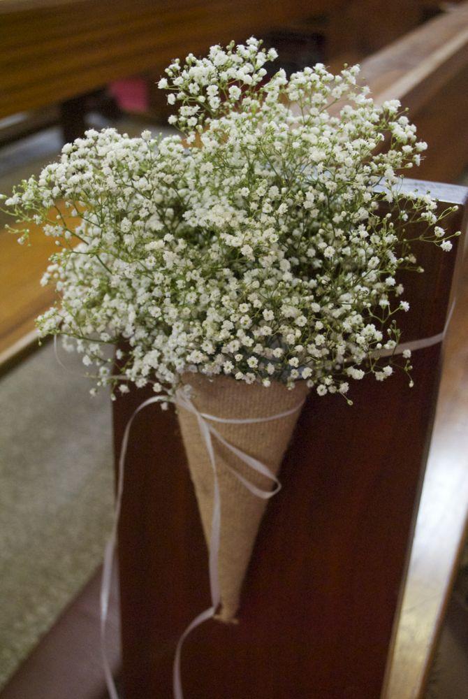 Conos de flores                                                                                                                                                      Más
