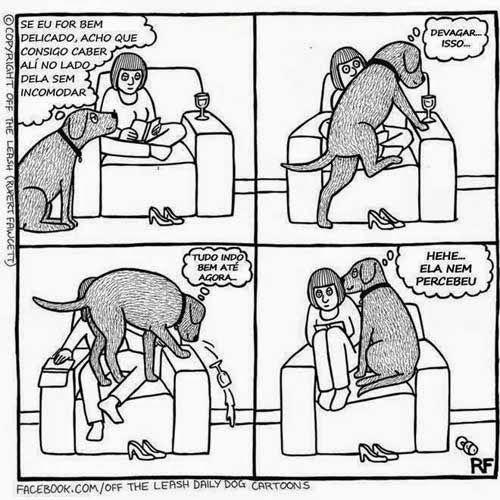"""""""O GRITO DO BICHO"""": Charge do dia: um cão delicado:"""