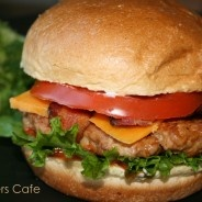 Weight watchers turkey burger