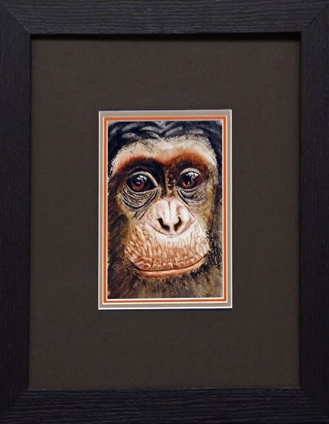 The Chimp, watercolour, (47x40cm) by Anne Saunders. Hornsea Art Society runners-up in Art Club of the Year 2017