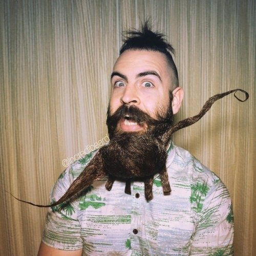 Best Facial Hair Images On Pinterest Facial Hair Facials And - Mr incredibeard really coolest beard ever seen