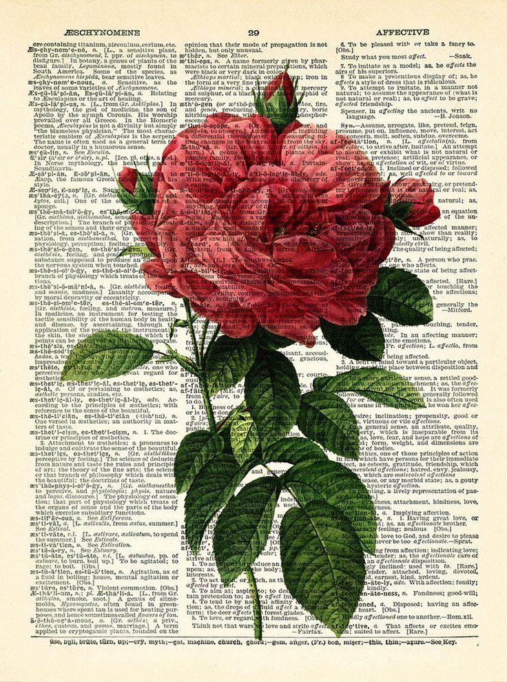 Цветок Rose Art печати Старинные книги печати Восстановленный по PrintsVariete
